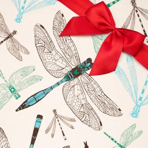 Dragonfly Gift set by Cherith Harrison