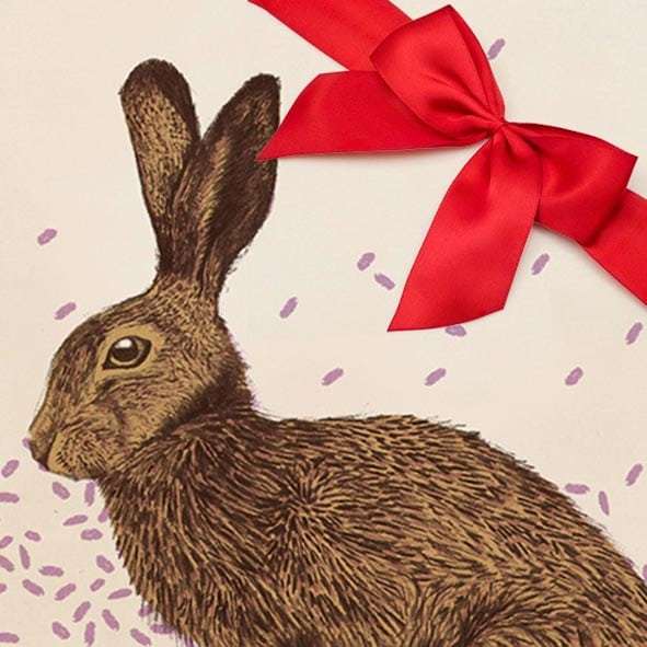 Hare Gift set by Cherith Harrison