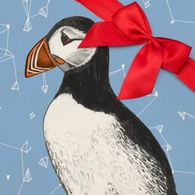 Puffin Gift set by Cherith Harrison
