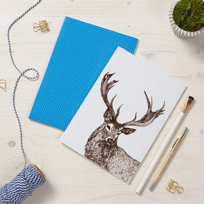 Noble Stag Notebooks by Cherith Harrison