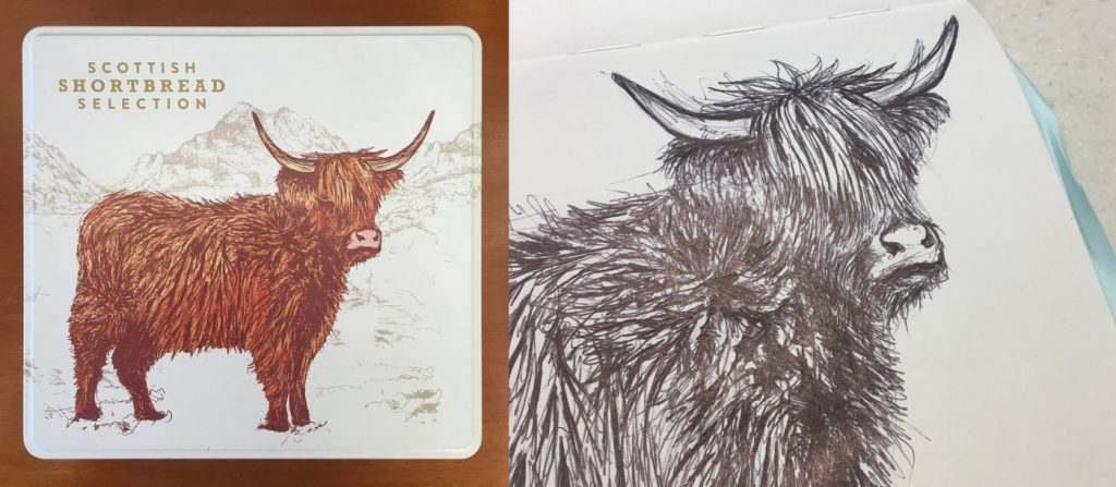 Highland Cow Design for Sainsbury's Shortbread by Cherith Harrison