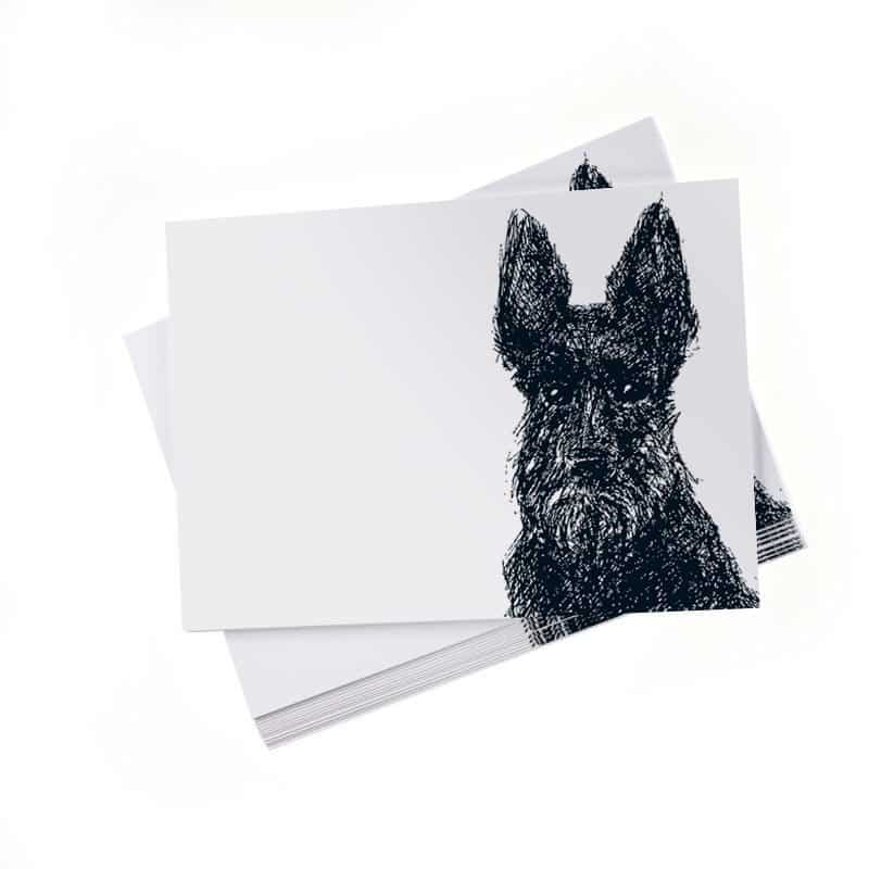 Loyal Scottie Dog Note Cards by Cherith Harrison
