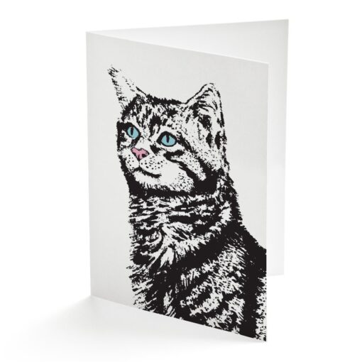 Curious Cat Card by Cherith Harrison