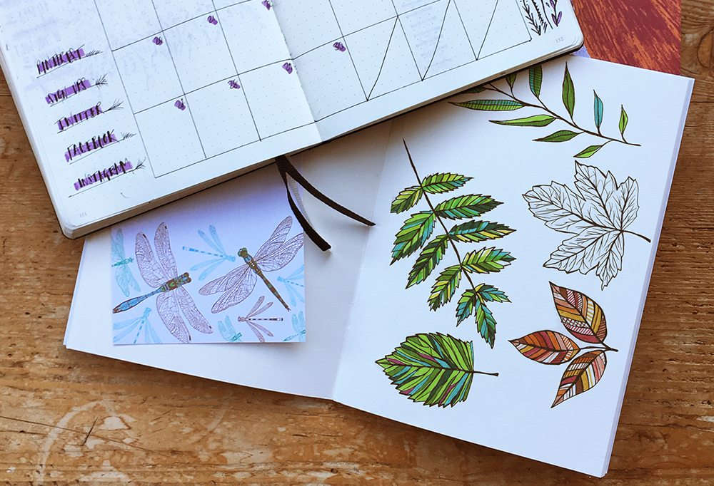 Bullet Journal Sketches by Cherith Harrison