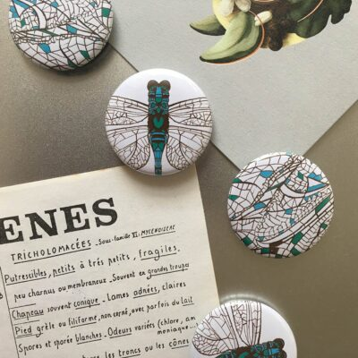animal magnets with dragonfly design by Cherith Harrison