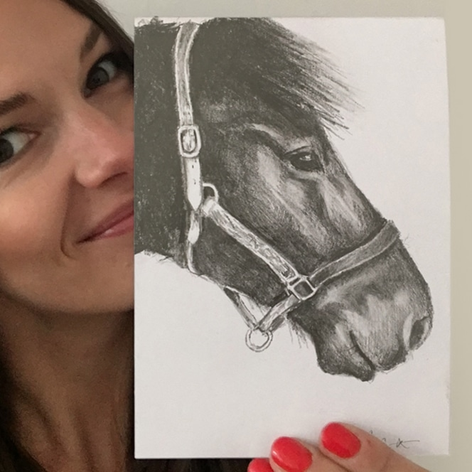 horse drawing by Cherith Harrison