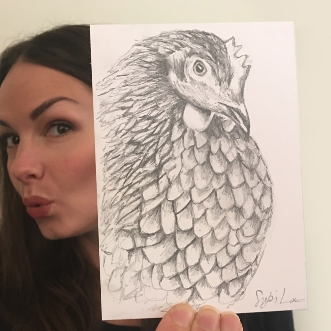 Chicken drawing by Cherith Harrison