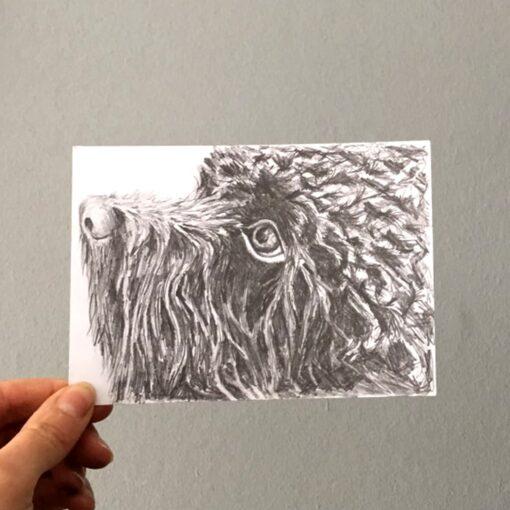 Postcard Pet Portrait by Cherith Harrison