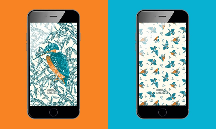 Digital wallpaper and phone background in kingfisher design by Cherith Harrison
